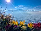 lake geneva french alps backdrop from