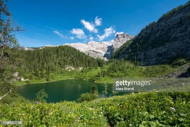 Lake Gruensee on the hiking trail to the Kaerlinger Haus, Berchtesgaden National Park, Berchtesgadener Land, Upper Bavaria, Bavaria, Germany