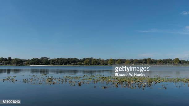 lake harris - lily harris photos et images de collection