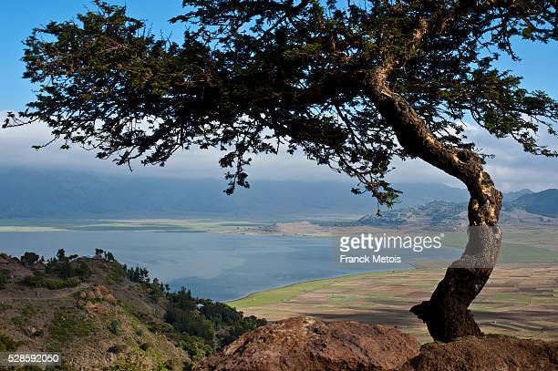 lake hashenge - tigray stock photos and pictures