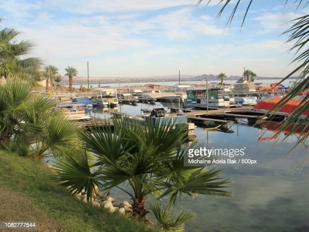 Lake Havasu's Marina