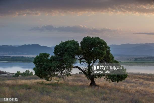 Lake Henshaw, a small is closed to the public due to a drop in its water level below 10% as viewed on July 13 at Lake Henshaw, California. Located at...