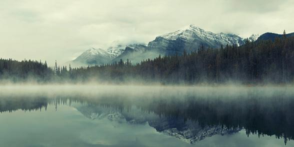 Lake Herbert 520797158