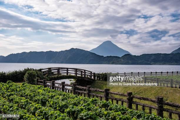 lake ikeda with mount kaimon , ibusuki , kyushu , japan