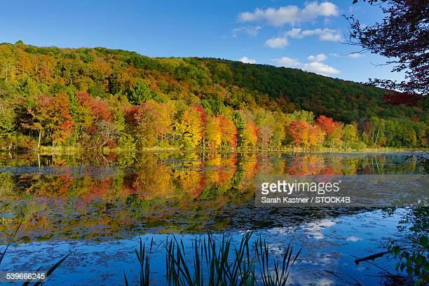lake in berkshires, massachusetts, usa - massachusetts foto e immagini stock