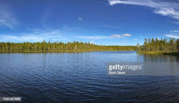 lake in finland. - lakeshore stock pictures, royalty-free photos & images