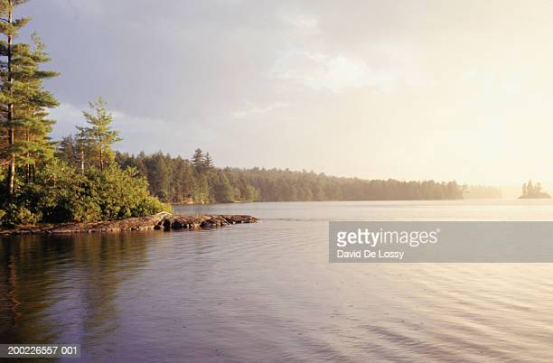 Lake in forest, scenic view