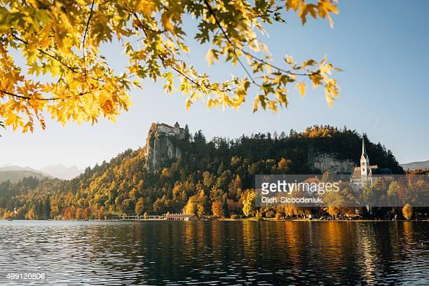 lake in slovenia - bledsjön bildbanksfoton och bilder