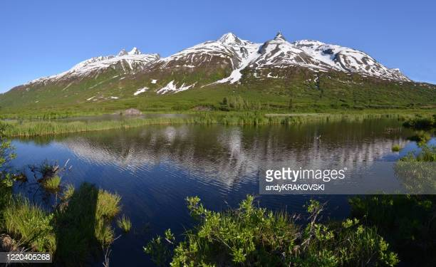 lake in the chugach mountains, alaska - chugach mountains stock pictures, royalty-free photos & images