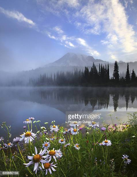 lake in the Mount Rainier National Park in Washington State
