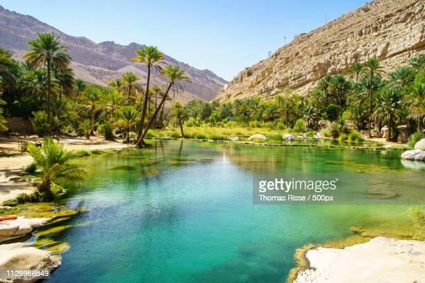 a lake in wadi bani khalid - oman fotografías e imágenes de stock