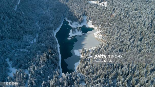 lake in winterwonderland - wasser stock pictures, royalty-free photos & images