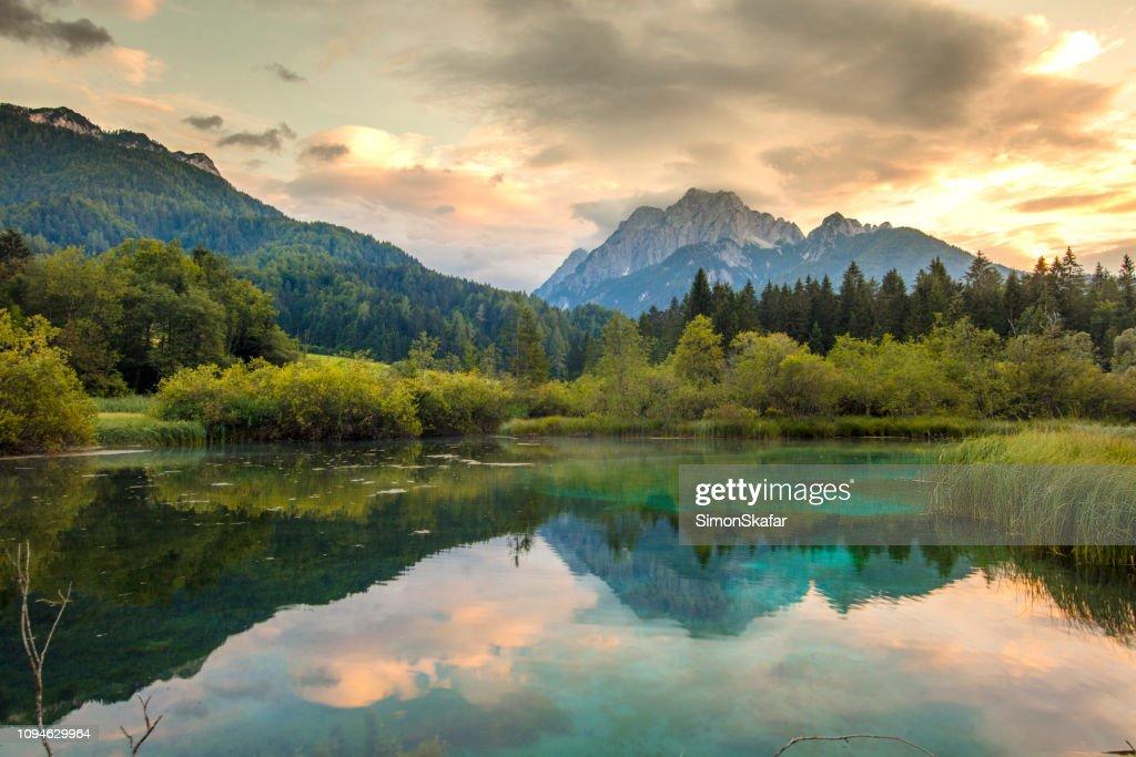 Lake Zelenci Springs, Gorenjska, Slovenië : Stockfoto