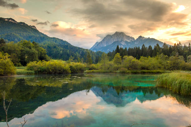 lake in?zelenci springs,upper?carniola,slovenia - horizontal stock pictures, royalty-free photos & images