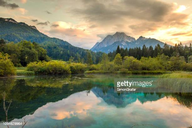 lake in zelenci springs,upper carniola,slovenia - mountain stock pictures, royalty-free photos & images