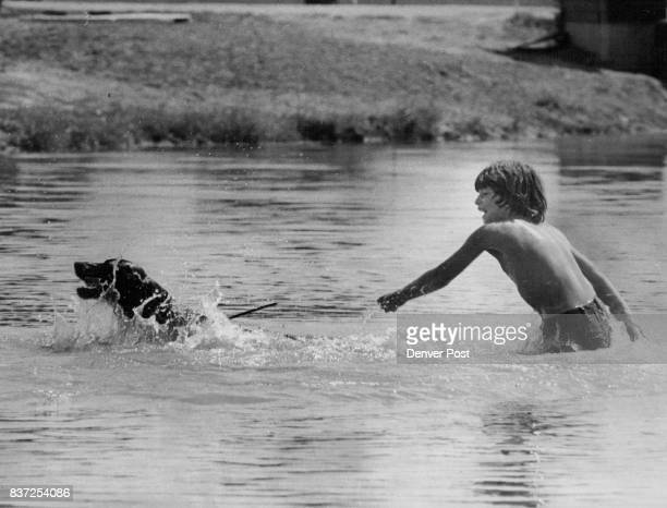 Lake is Best Friend to Boy and his Dog John Patricolo and his dog Racky romp in Webster lake Northglenn during the 90degreeplus weather before...