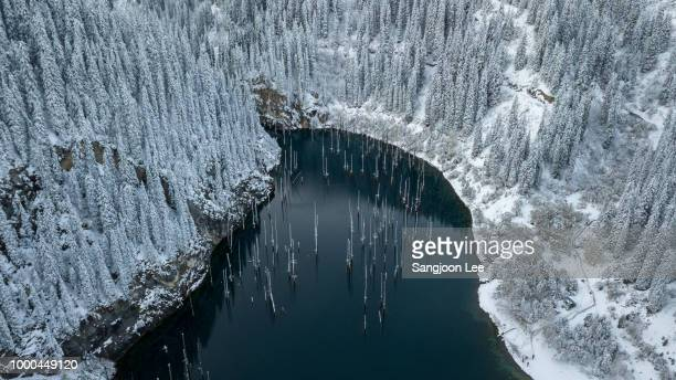 lake kaindy - kyrgyzstan stock pictures, royalty-free photos & images