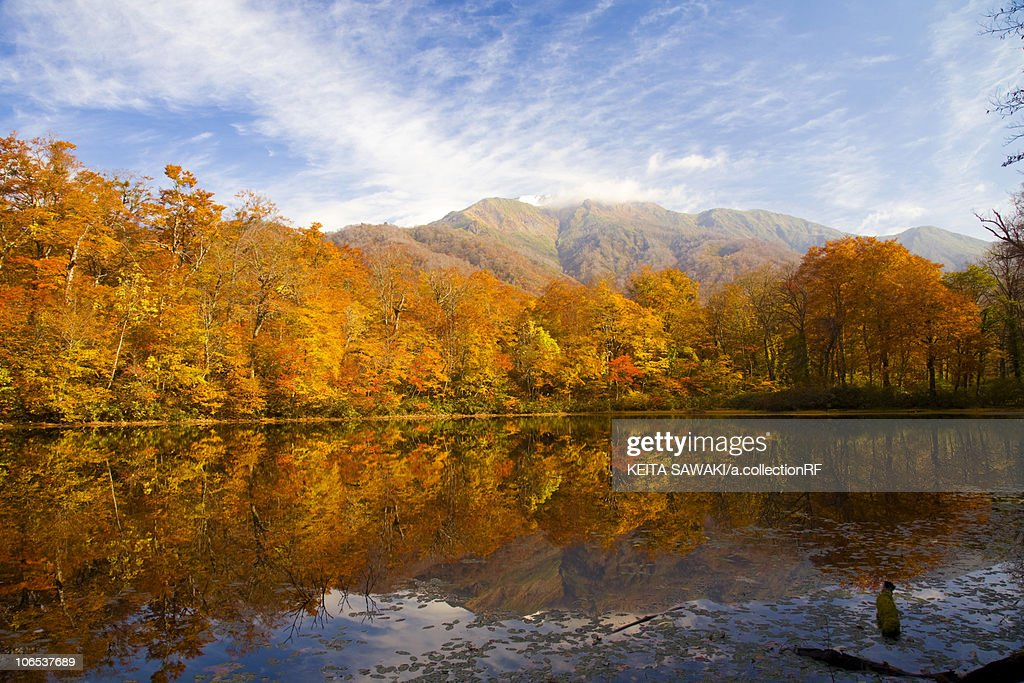 Lake karikomi in autumn, Fukui Prefecture, Honshu, Japan : Stock Photo