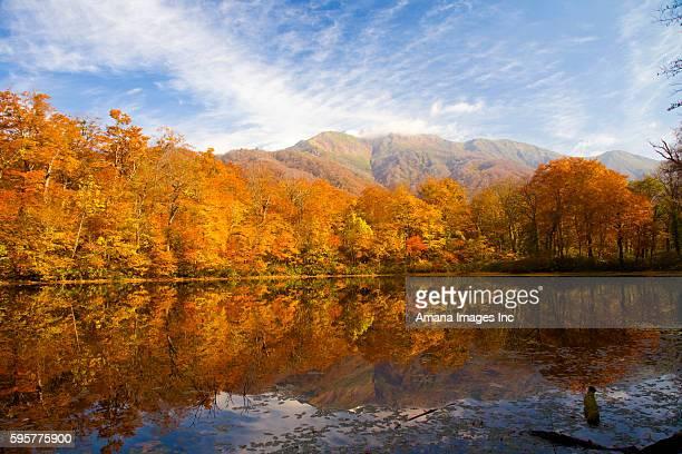 lake karikomi in autumn, fukui prefecture, honshu, japan - fukui prefecture stock photos and pictures