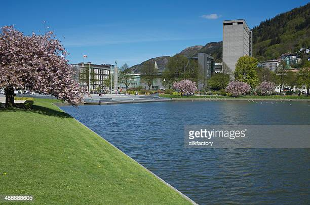 lake lille lungegardsvannet and festplassen square in bergen in spring - town hall stock pictures, royalty-free photos & images