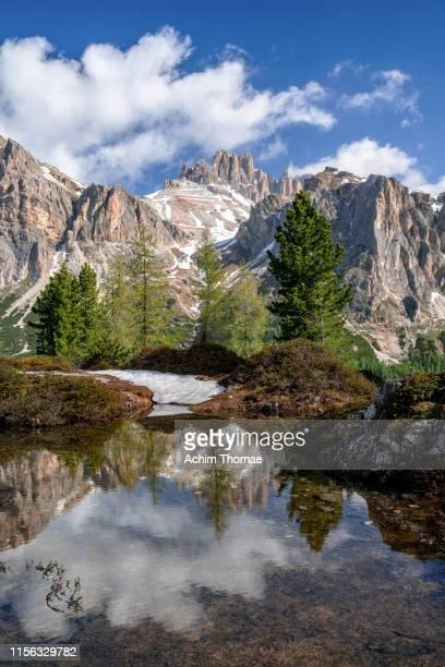 lake limides, dolomite alps, south tyrol, italy, europe - ベッルーノ ストックフォトと画像
