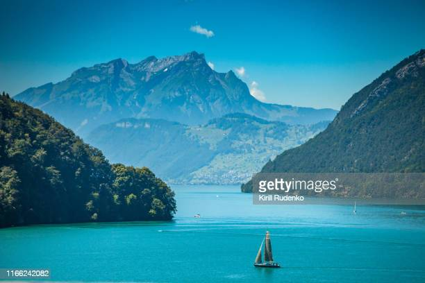 lake lucerne in summer - schwyz stock pictures, royalty-free photos & images