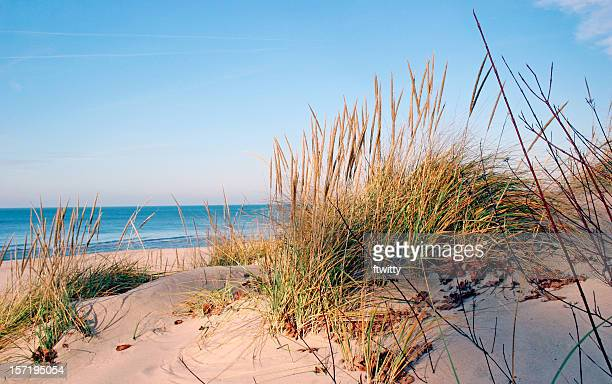 lake michigan - lakeshore stock pictures, royalty-free photos & images