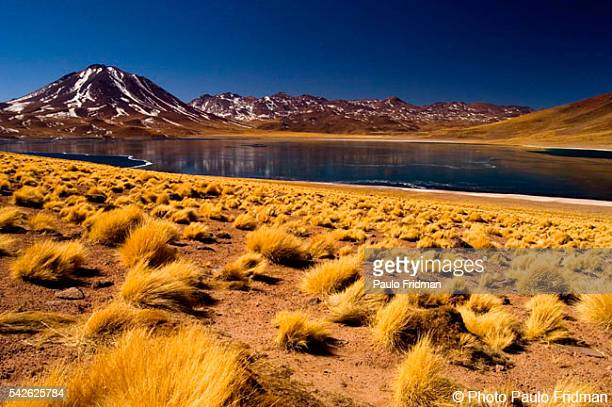 Lake Miniques at the foot of the Licancabur Volcano on the border of Bolivia and Chile near the Atacama Desert