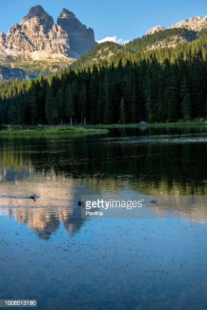 lake misurina, picturesque afternoon scene in thetre cime di lavaredo national park, dolomites, european alps, italy, - belluno stock pictures, royalty-free photos & images
