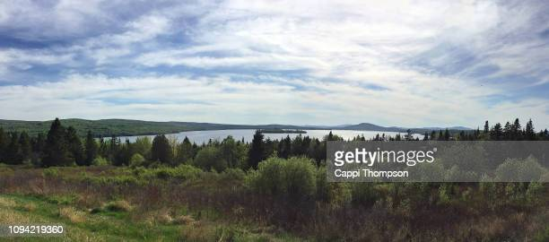 lake mooselookmeguntic in the rangeley lakes area of maine, usa during spring with lake, forest, and trees. - mooselookmeguntic lake - fotografias e filmes do acervo