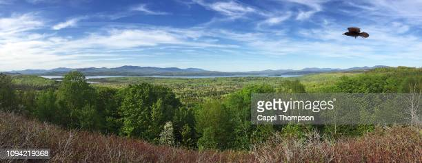 lake mooselookmeguntic near the rangeley lakes are in north eastern maine, usa during spring. - mooselookmeguntic lake - fotografias e filmes do acervo
