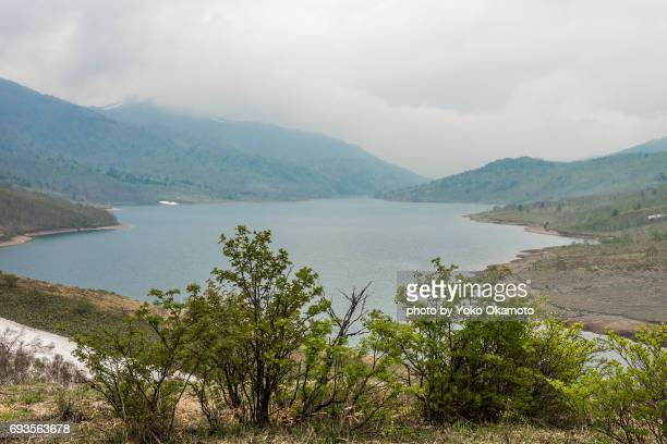 lake nozori of spring - 湖 stock pictures, royalty-free photos & images