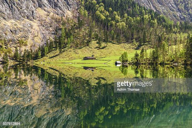 lake obersee, national park berchtesgaden - bavaria - germany - berchtesgaden national park stock photos and pictures