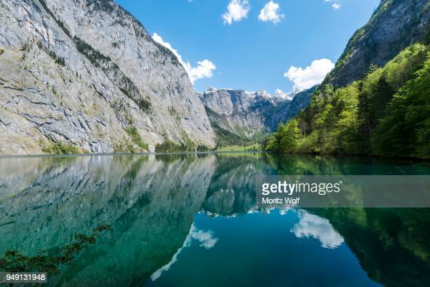 lake obersee, reflection in water, salet am koenigssee, national park berchtesgaden, berchtesgadener land, upper bavaria, bavaria, germany - berchtesgaden national park stock photos and pictures