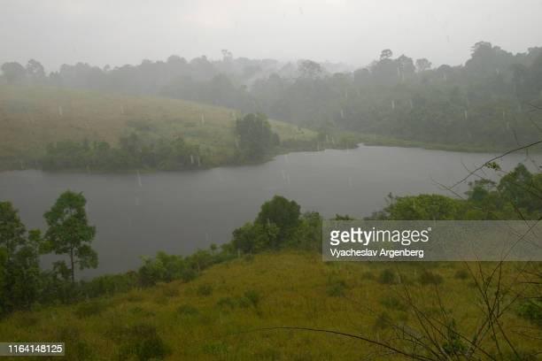 lake of khao yai under the rain, tropical monsoon, thailand - argenberg stock-fotos und bilder