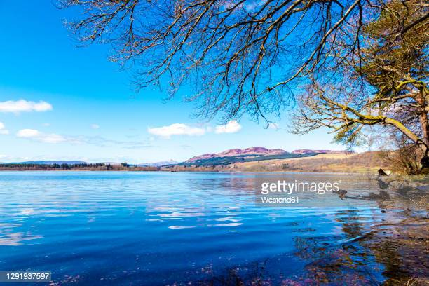 lake of menteith on sunny day - lake stock pictures, royalty-free photos & images