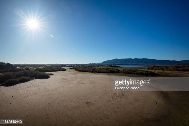 lake of orbetello - orbetello bildbanksfoton och bilder