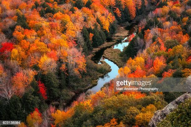 lake of the clouds in peak fall color - ポーキュパイン山脈ウィルダネス州立公園 ストックフォトと画像