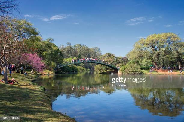 lake of the ibirapuera park, são paulo, brazil. - são paulo stock pictures, royalty-free photos & images