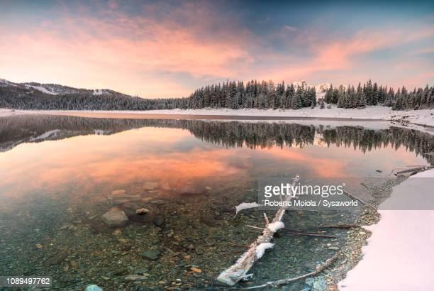 lake palù at dawn, malenco valley, italy - riva del lago foto e immagini stock