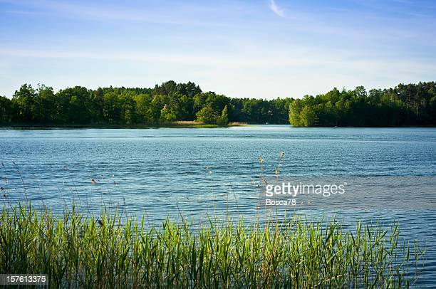 湖のパノラマビュー