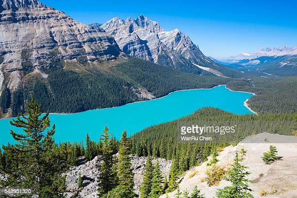 lake peyto, banff national park, canadian rockies