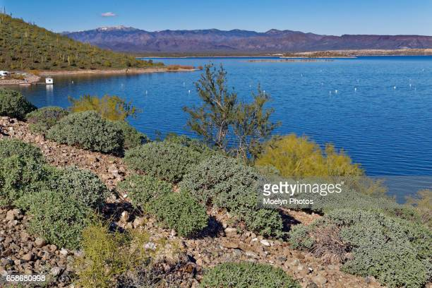 lake pleasant on a clear day - ペオリア ストックフォトと画像