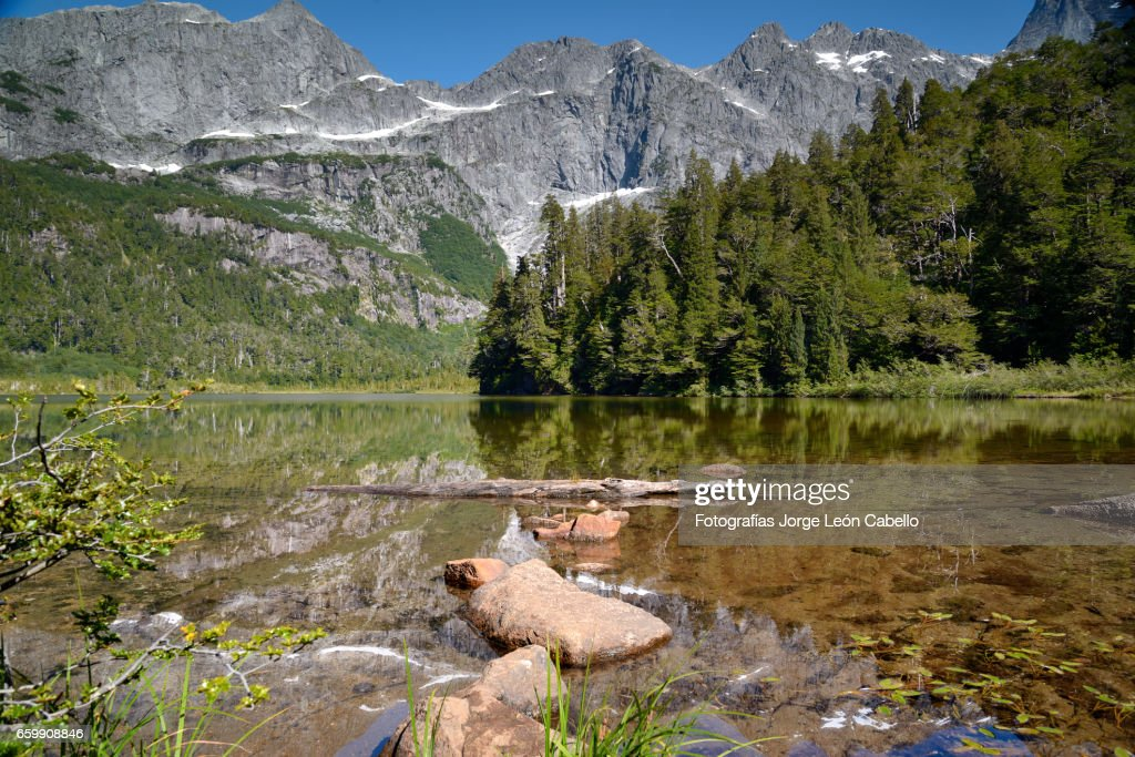 Lake Quetrus edge under clear sky : Stock Photo