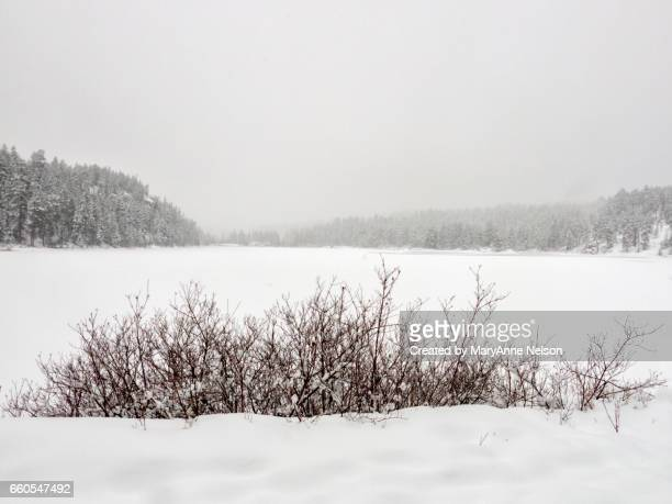 lake scene in winter - mary lake stock photos and pictures