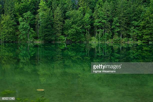 lake schwanensee