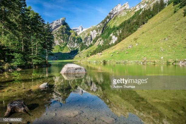 Lake Seealpsee, Swiss Alps, Appenzell, Switzerland, Europe