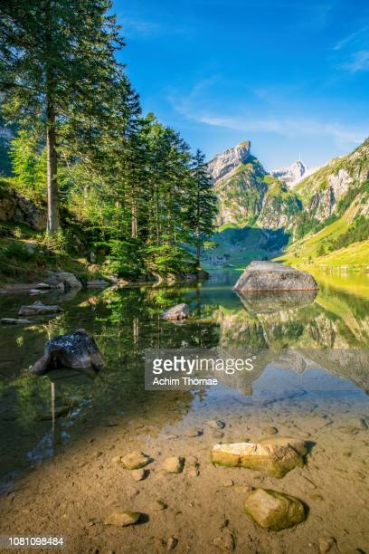 lake seealpsee, swiss alps, appenzell, switzerland, europe - beschaulichkeit stock pictures, royalty-free photos & images