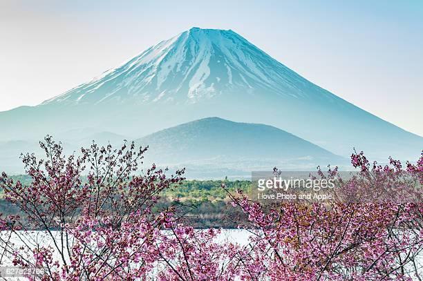 Lake Shoji springtime
