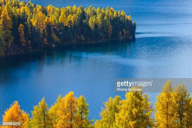 Lake Sils Piz da la Margna 3158 m Upper Engadin Grisons Switzerland